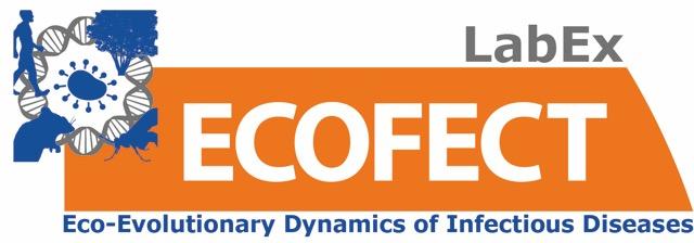 logo_ECOFECT